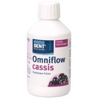Омнифло (Omniflow) порошок для чистки, вкус Смородина - 300 гр