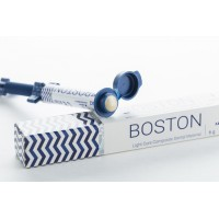 Бостон (Boston) - шприц 6 гр. оттенок B1 / ARKONA